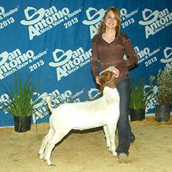 Chad Walker Livestock Co Goats